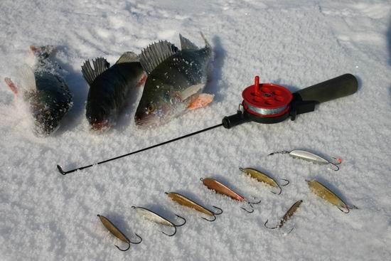 рыбалка на блисну