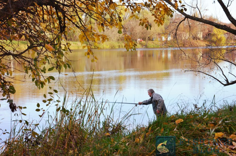осенняя рыбалка на карпа насадка прикормка видео