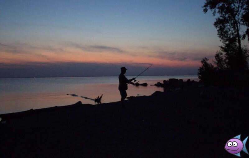ночная рыбалка на реке