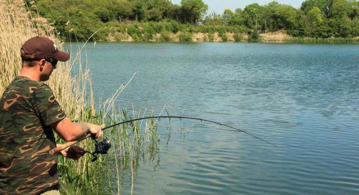 ловля-сазана-на-реке