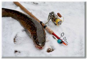 snasti-dlja-zimnei-rybalki