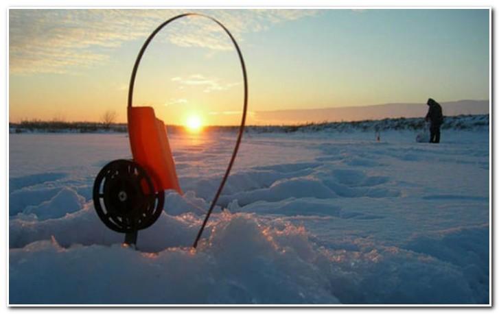 ловля форели зимой на жерлицы