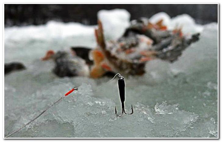 ловим на черта зимой