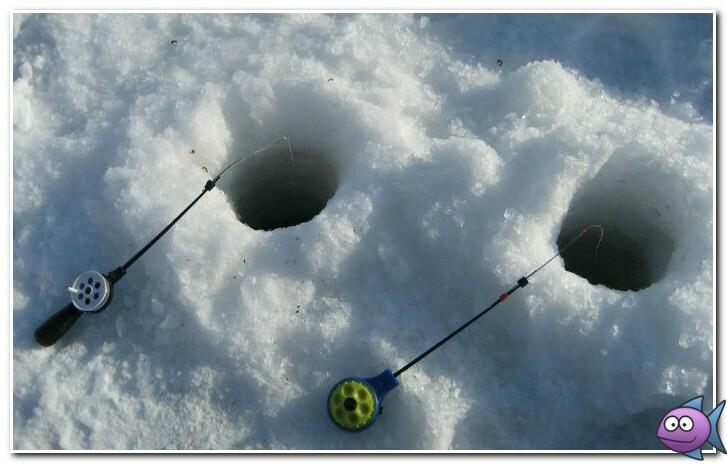 на что ловить карпа зимой