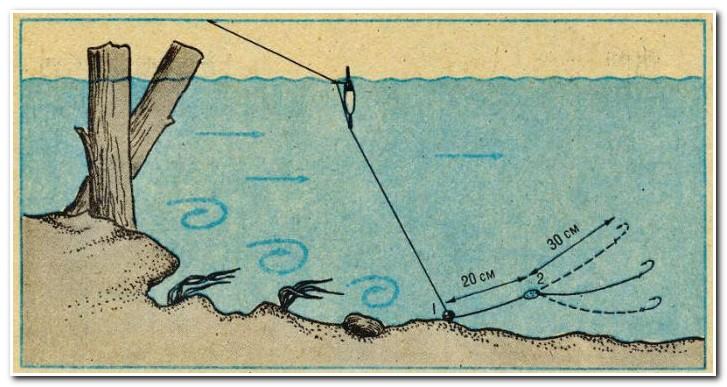 Если снижение воды происходит очень медленно, то рыба может не реагировать на такие условия.