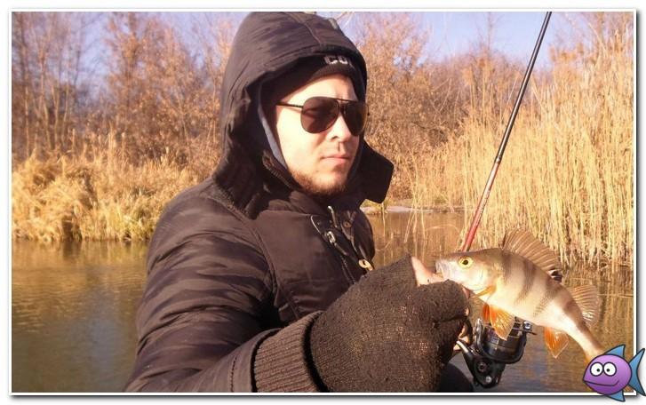 ловля окуня в ноябре