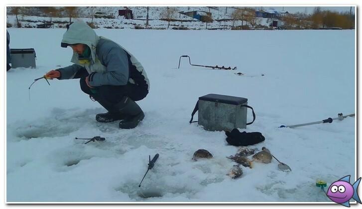 где ловить карася зимой
