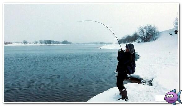 ловля щуки зимой на открытой воде