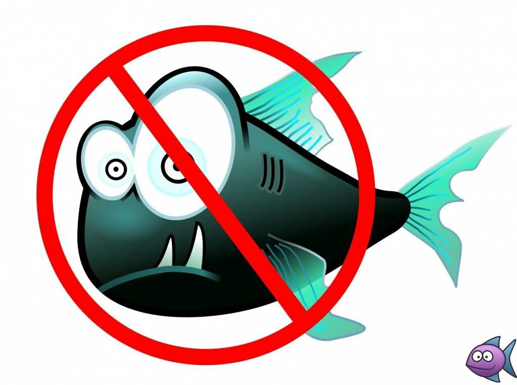 Правила рыболовства в республике Башкортостан