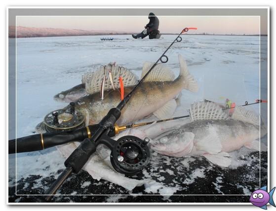 lovlja-sudaka-zimoj