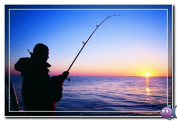 морская рыбалка в финляндии