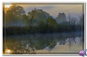 утро река туман
